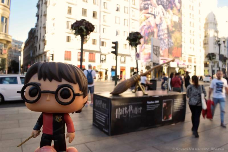 Harry Potter y la Nimbus 2000