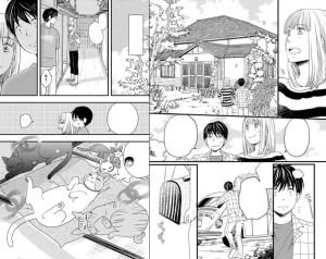 Diario-nuestra-vida-gatos-Kamakura-cbt-manga